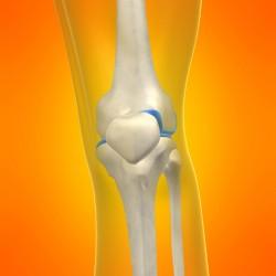 sports-injury-knee-sydney